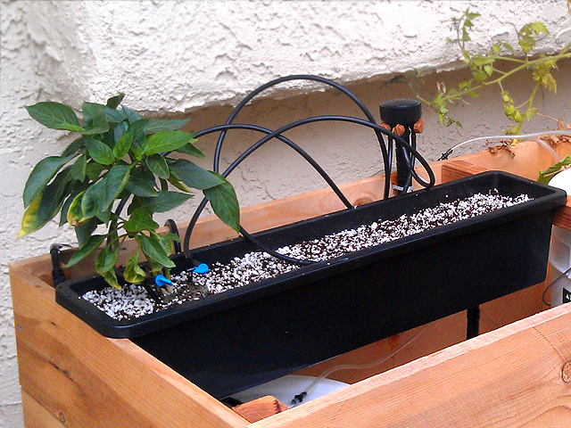 A simple hydroponic drip system diy - Diy drip irrigation systems ...