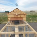 Chicken Coop Wyoming Weather Vane