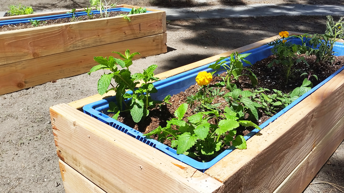 Raised Container Garden Bed